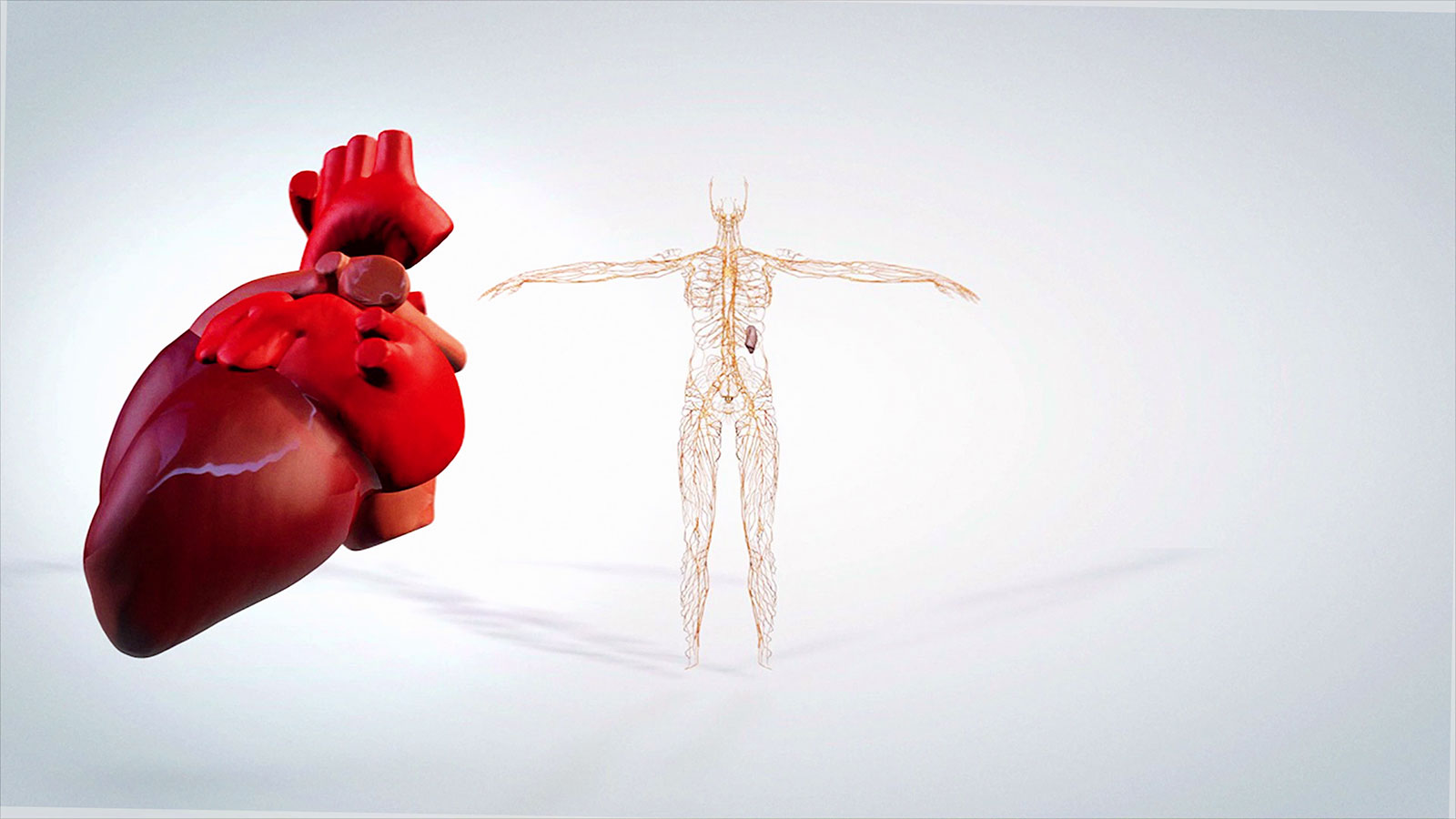 medische-animatiefilm-laten-maken-ziekenhuis